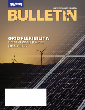 Cover Photo of NWPPA bulletin with solar panels and wind turbines